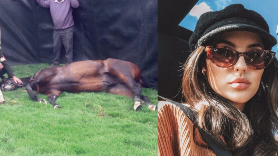 lucy-watson-horse-racing-death-count