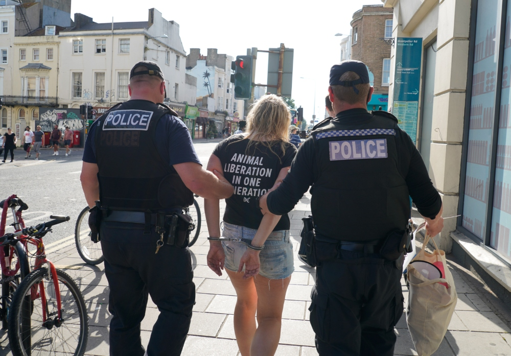 Vegan activist is arrested in Brighton