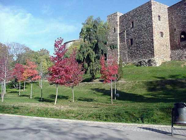 Parc de Vallparados