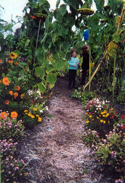 Hull Park and Grand Traverse Children's Garden and Learning Garden
