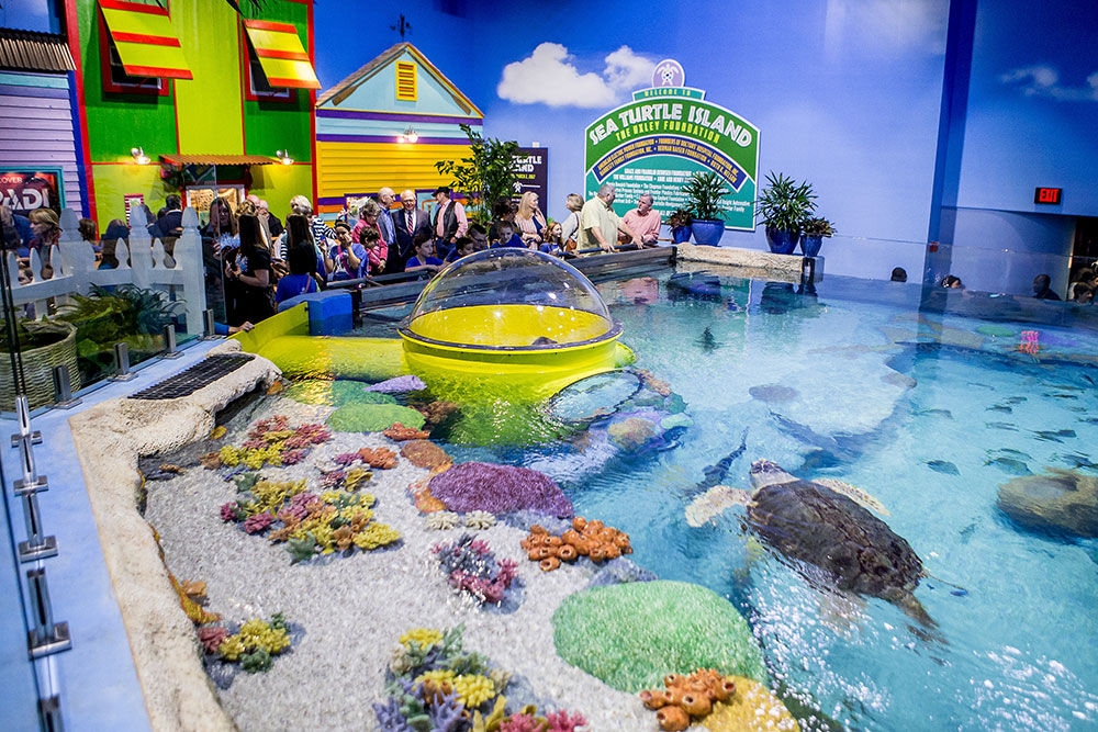 Sea Turtle Island features three viewing levels and an underwater observation station that children (and agile adults) can crawl into and see the sea turtles and fish.
