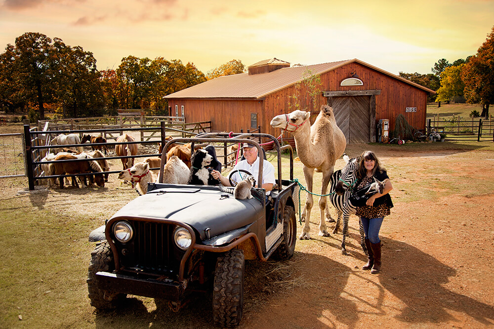 Linda and Bill Goldner, owners of Oasis Animals, have always had a love for animals and have incorporated creatures such as camels and horses into their biblical productions throughout the years.