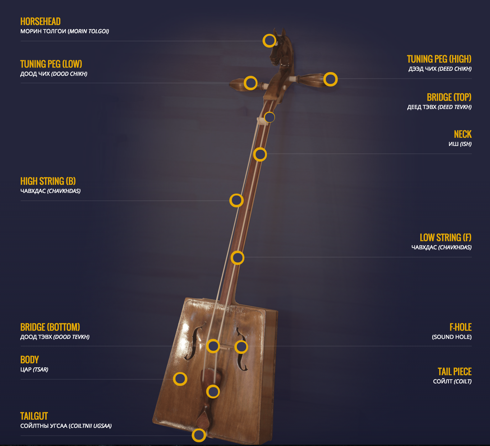Infographic explaining the horsehead fiddle's various parts