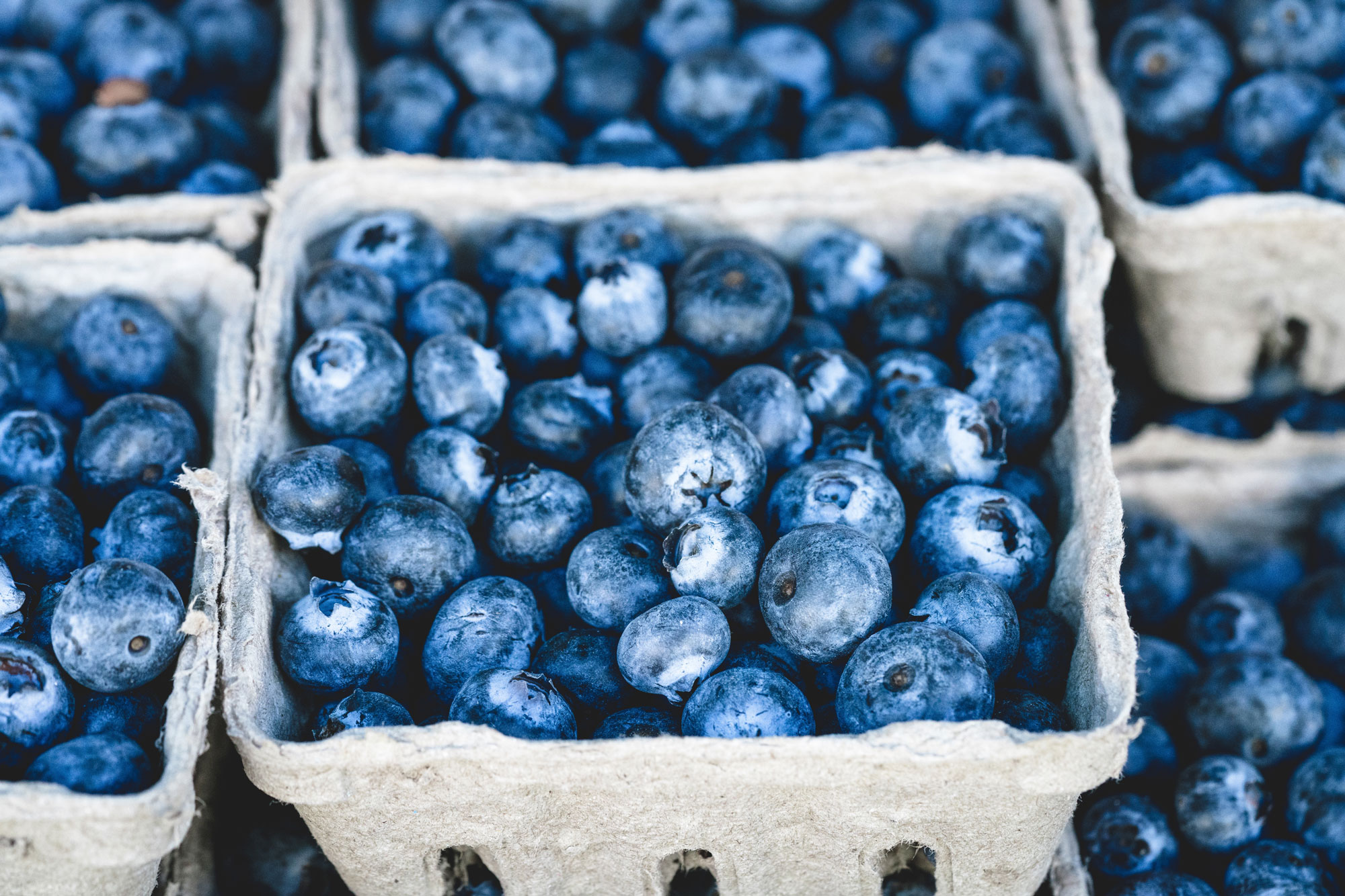 Closeup of blueberries
