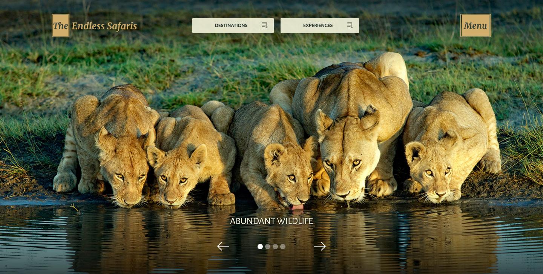 Endless Safaris travel website homepage