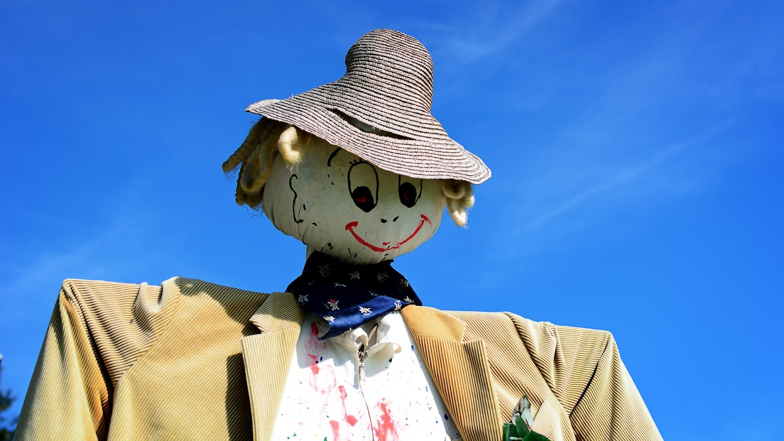 A scarecrow shot from below showing the shouders up.