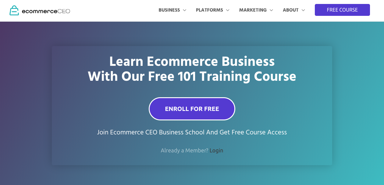 Ecommerce CEO homepage.