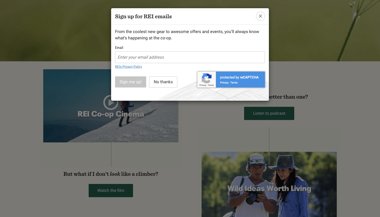 Popup window to sign up for REI emails.