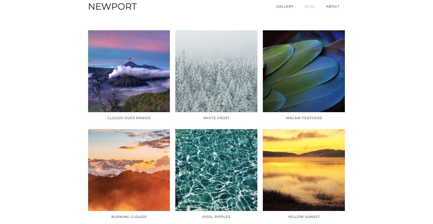 newport portfolio template
