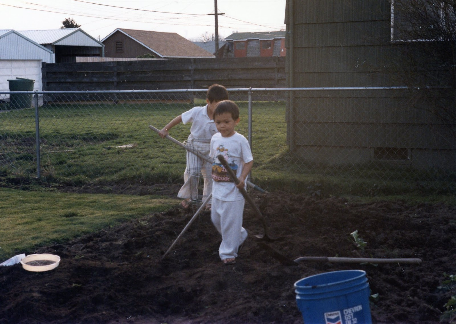 David and his brother as kids in the yard.