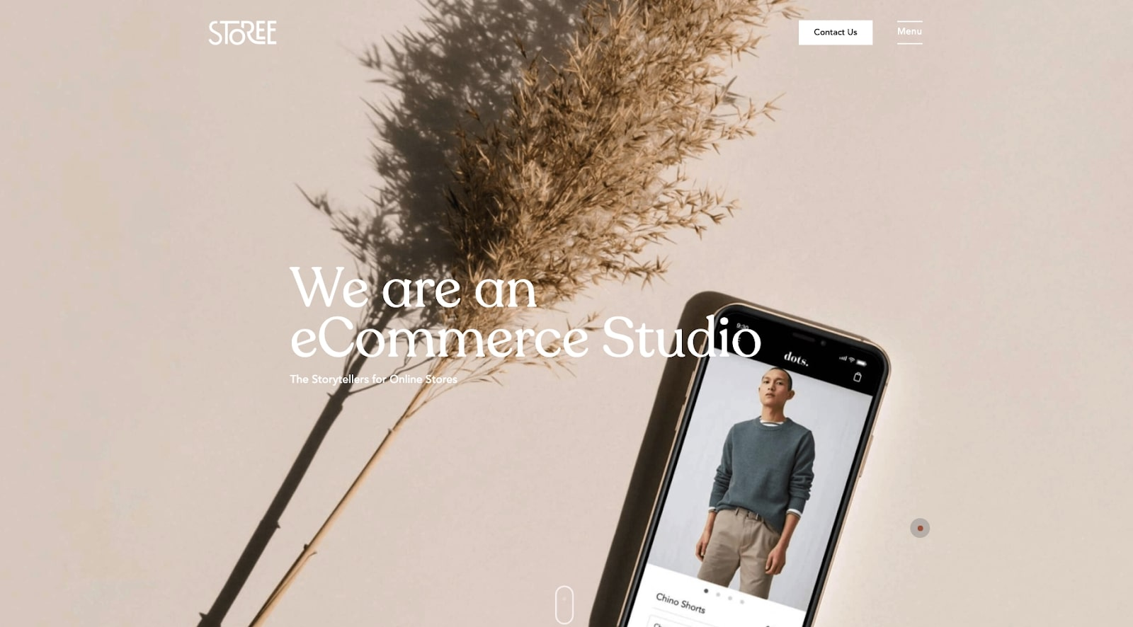 storee website