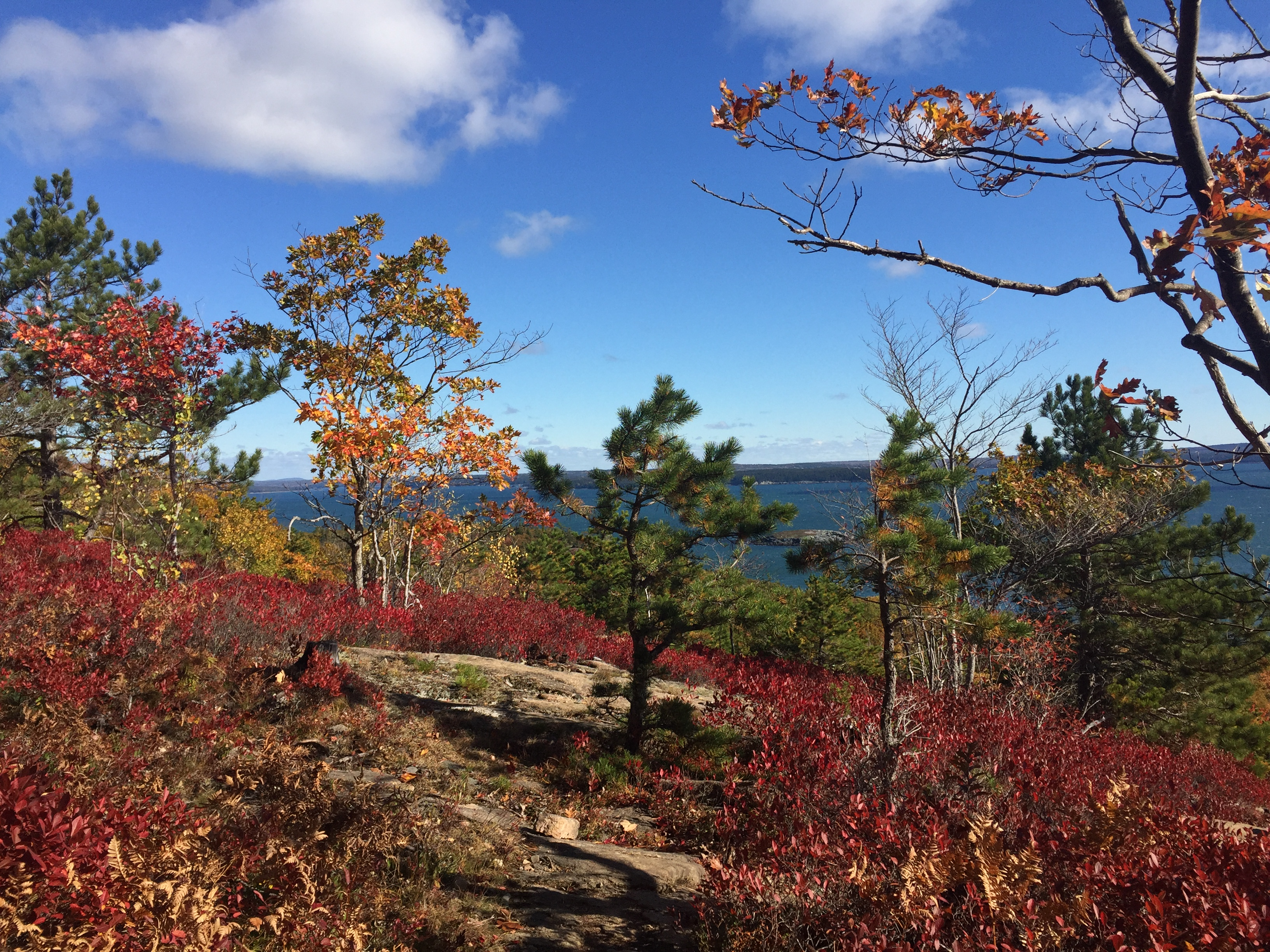 5. Park Loop Road, Acadia National Park
