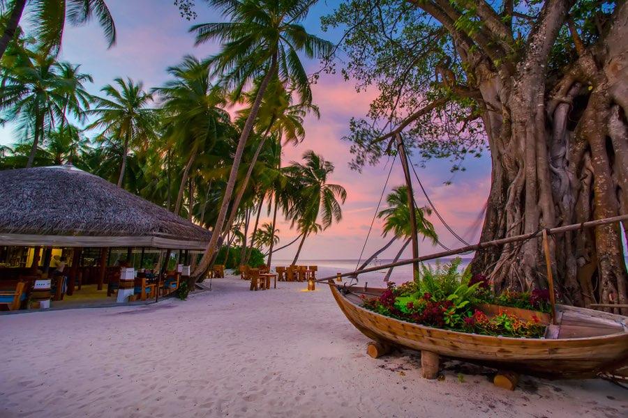 Aaveee Resort Maldive Coctail bar Vakaru