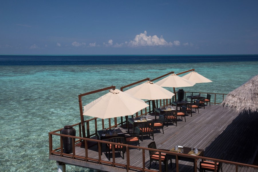 Coco Palm Bodu Hithi resort Maldive ristorante The Stars