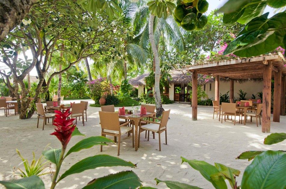 Resort Maldive Kuramathi Island resort ristorante Island Coffe Shop