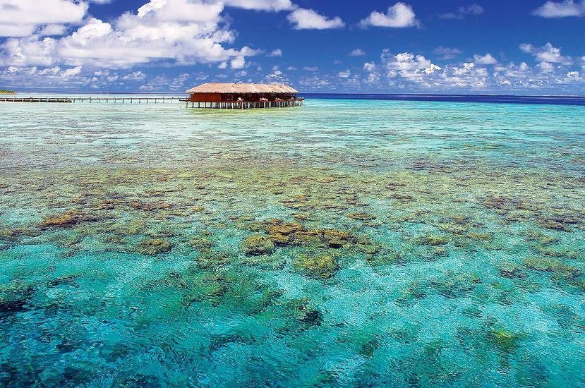 Resort Maldive Filitheyo Island Resort water villa