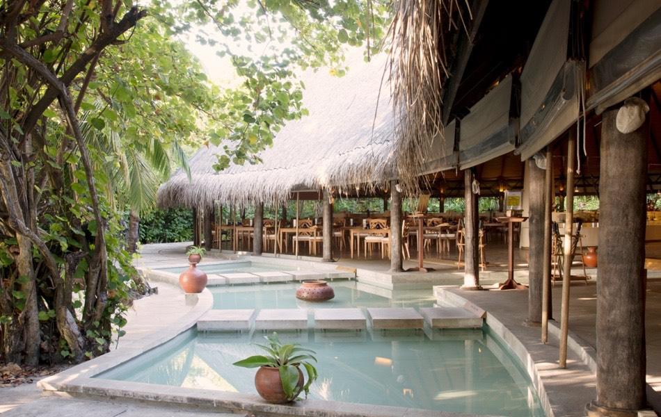 Coco Palm Dhuni Kolhu resort Maldive ristorante Cowrie