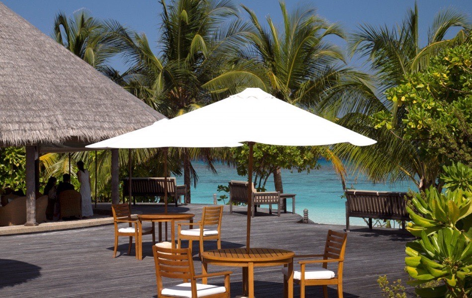 Coco Palm Dhuni Kolhu resort Maldive Conch Bar