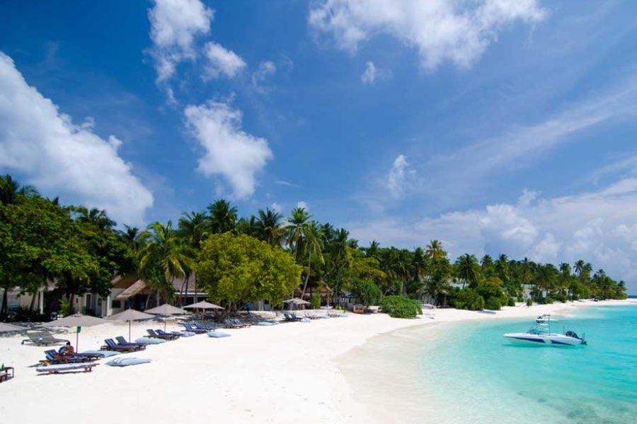Amilla Fushi resort maldive club