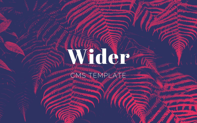 wider-cms-1
