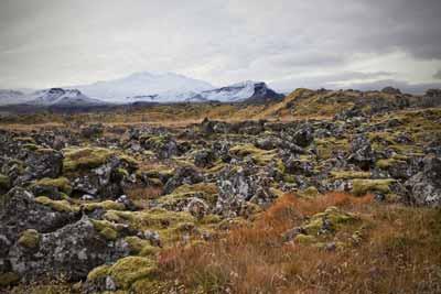 Landscape in Snæfellsnes