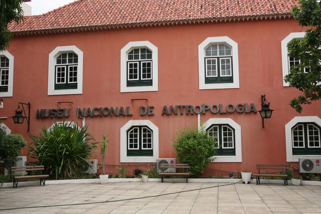 Museu Nacional de Antropologia receberá novos livros