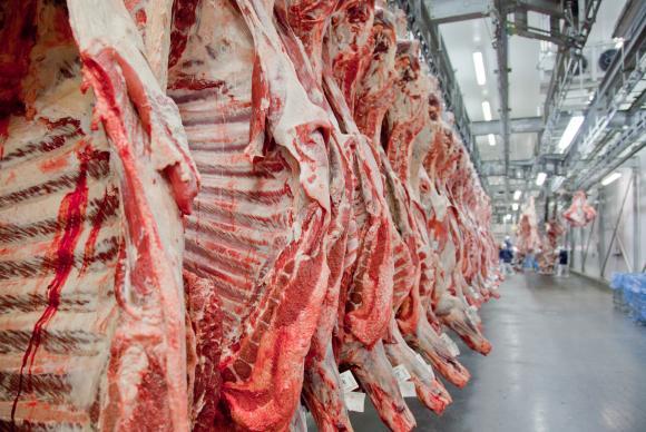 Brasil lidera exportação de carne bovina e expõe produto para mais investimentos em Angola
