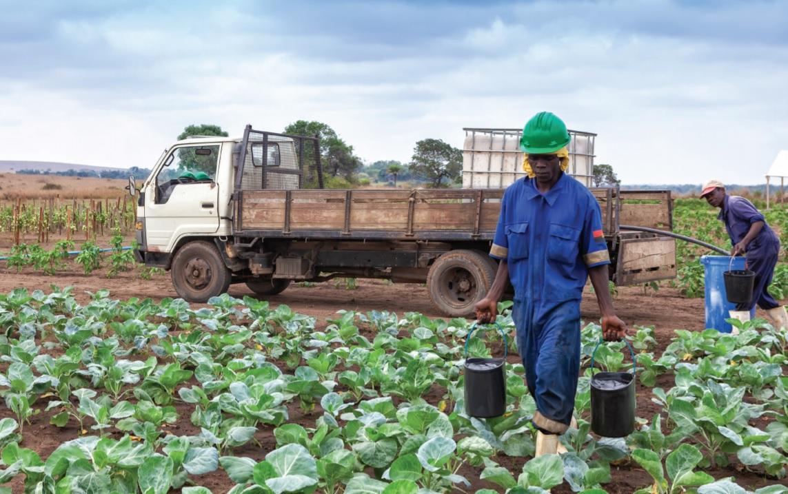 Malanje afectada pela fome e pobreza devido ao encerramento de pequenos negócios
