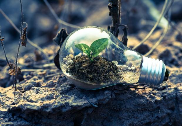 TICs podem ajudar a reduzir as emissões de carbono e promover a economia verde em África