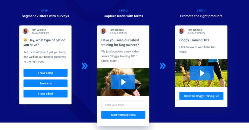 Pet shop survey audience segmentation example