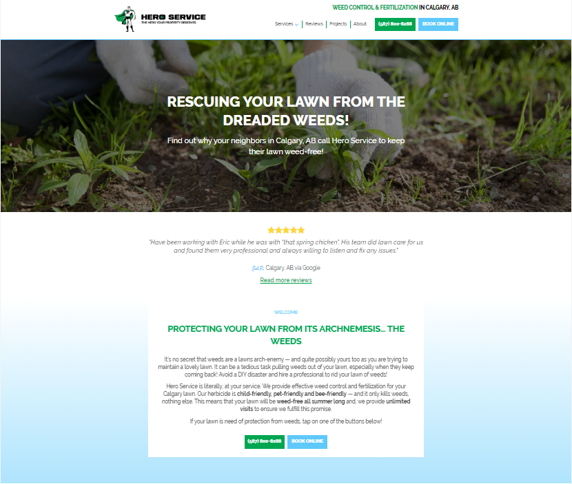 Example of a landing page from Hero Service