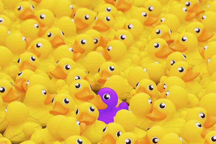 Image of a purple plastic talk standing out from a crowd of yellow ducks to demonstrate the importance of your lead-generation website standing out from the competition.