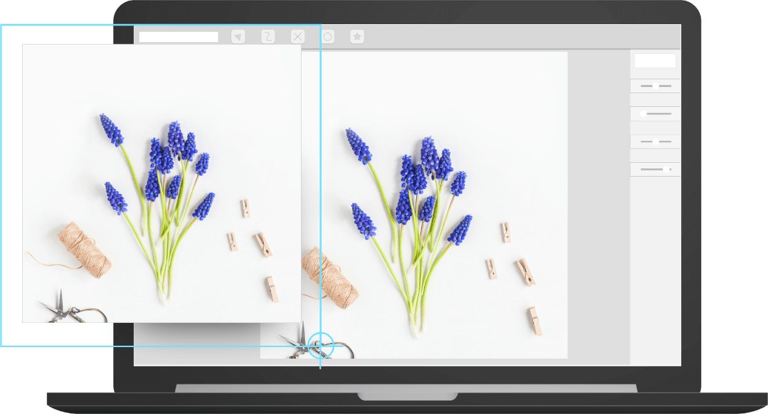 A computeer zooming in on a picture of flowers