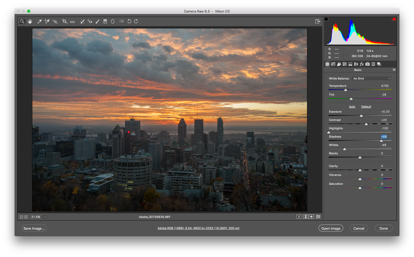 A screenshot of Camera Raw, a photoshop plugin.