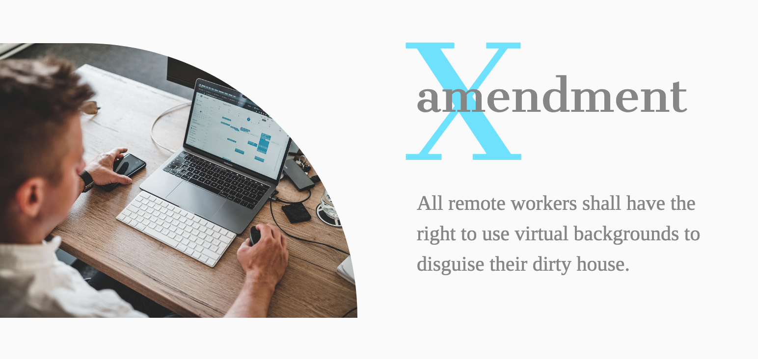 Amendment X- All remote workers shall have the right to use virtual backgrounds to disguise their dirty house