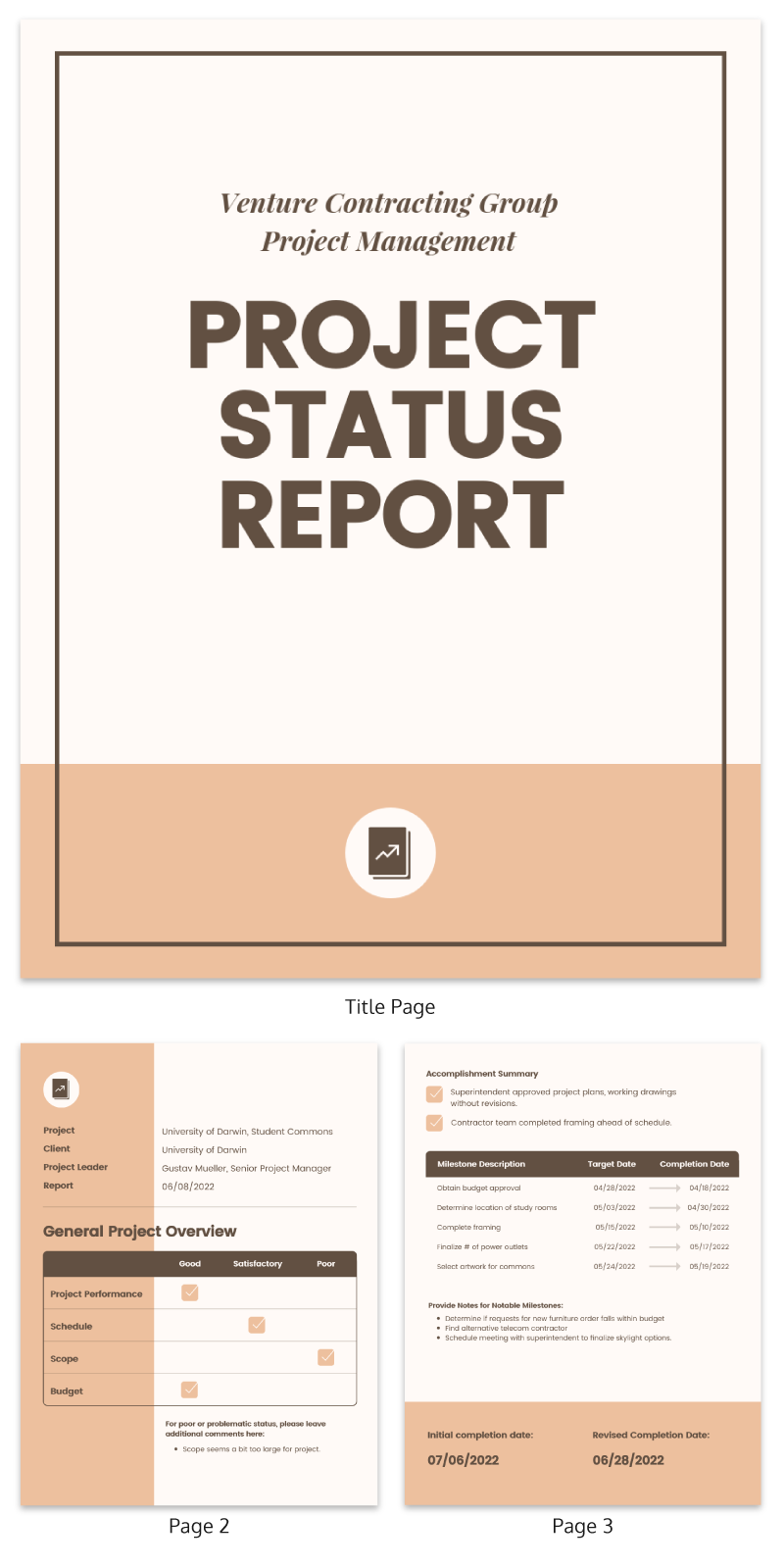 Project status report example