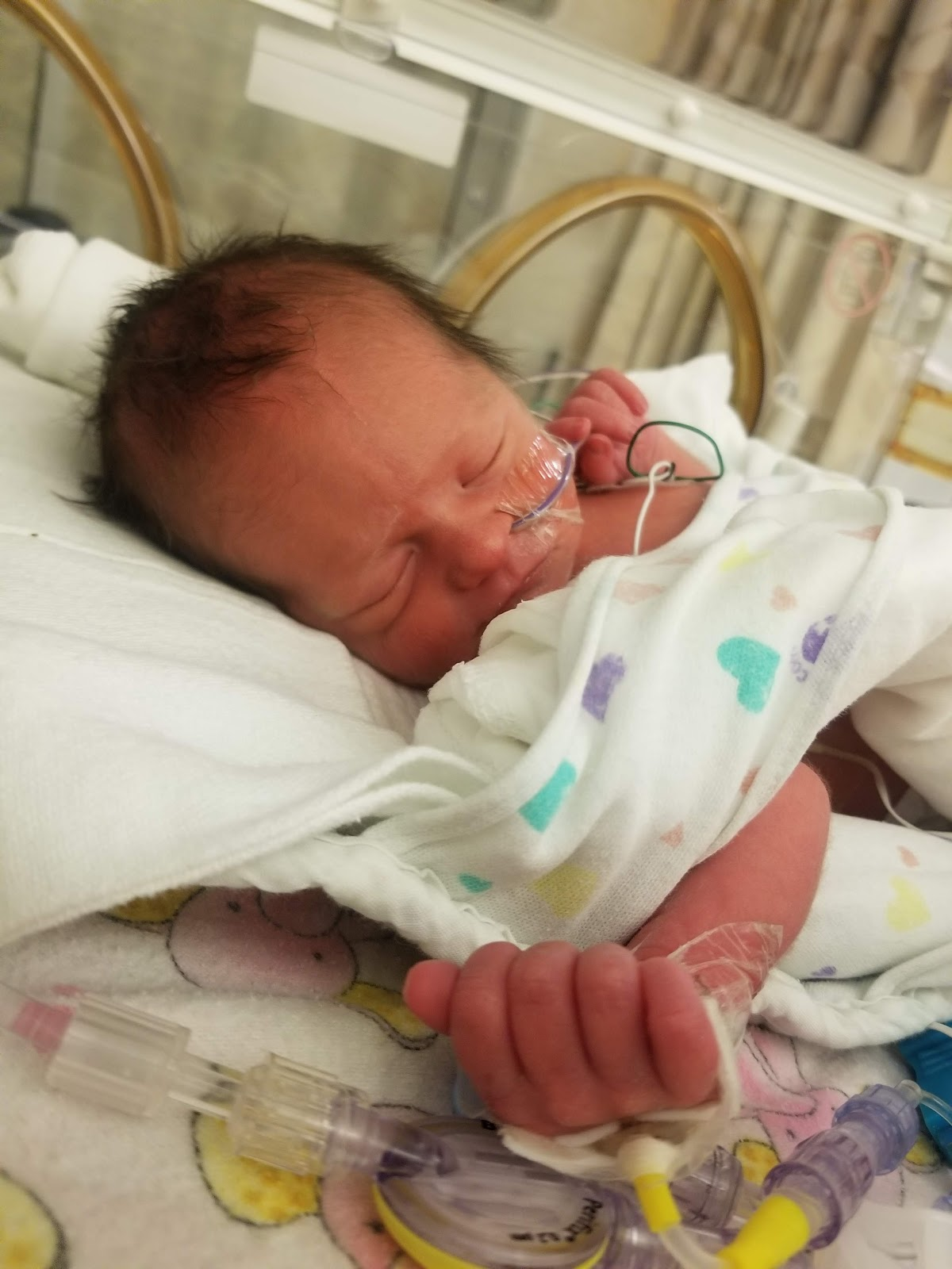 Maile Waite's baby Madison in the NICU