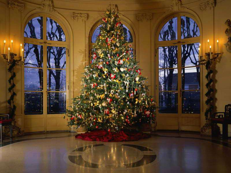 christmas tree in candle-lit room with large windows