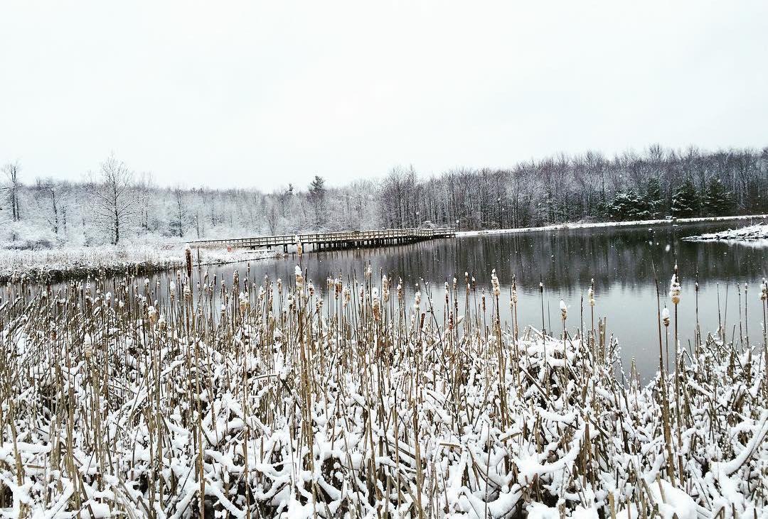 Hinckley lake in the winter snow
