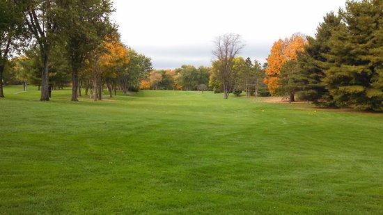 empty golf course at safari golf club