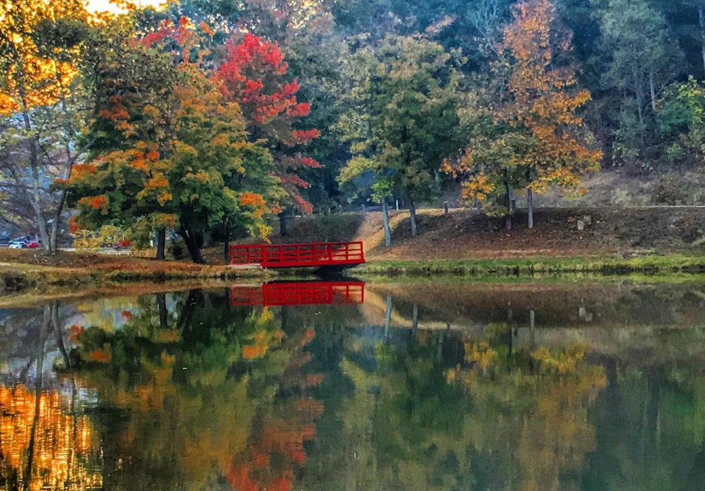 red bridge over water with surrounding autumn-colored forest