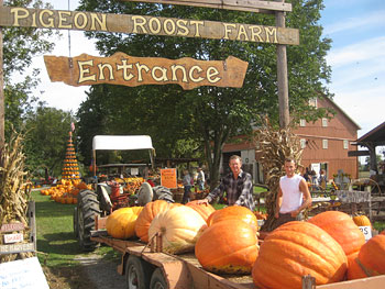 Image result for Pigeon Roost Farm!