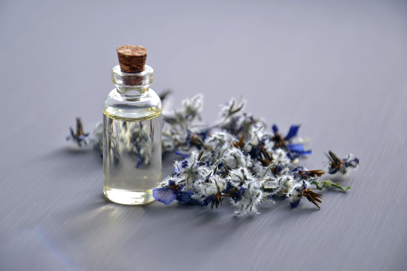 A small glass vial of a cozy lavender essential oil