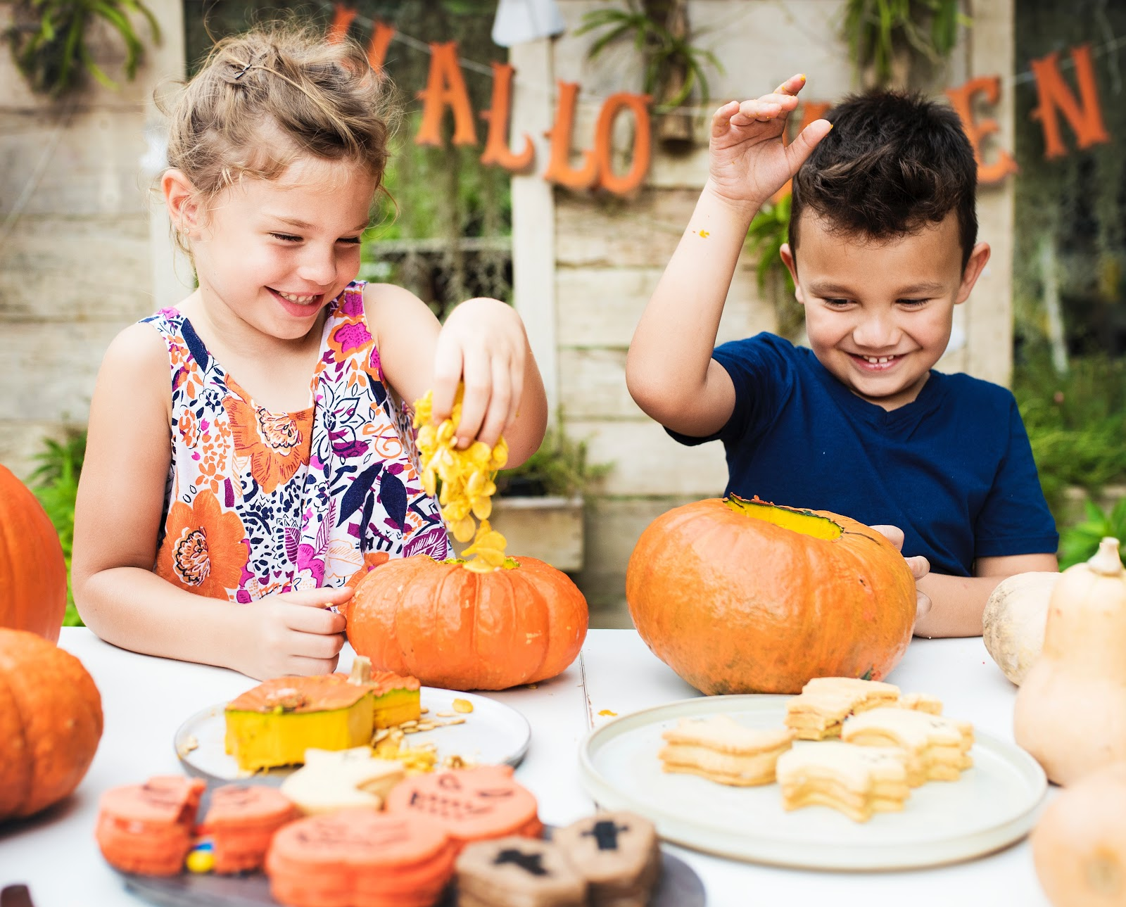 A boy and a girl enjoying a halloween party scoop seeds and pulp out of pumpkins
