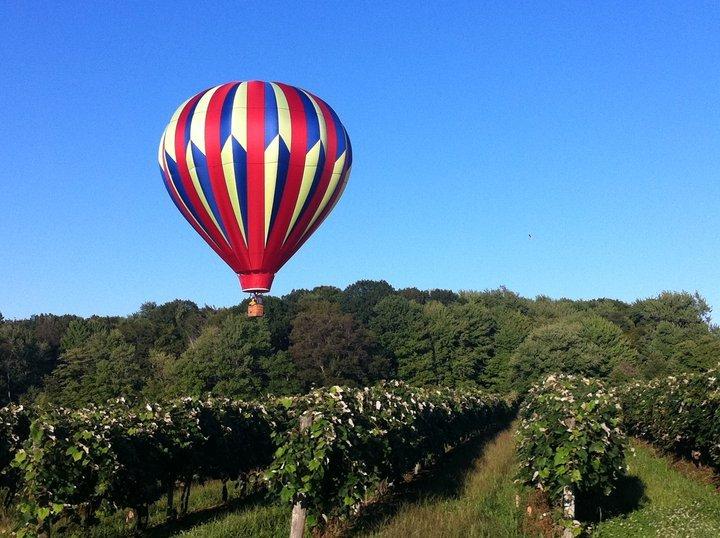 hot air balloon over Debonne vineyard
