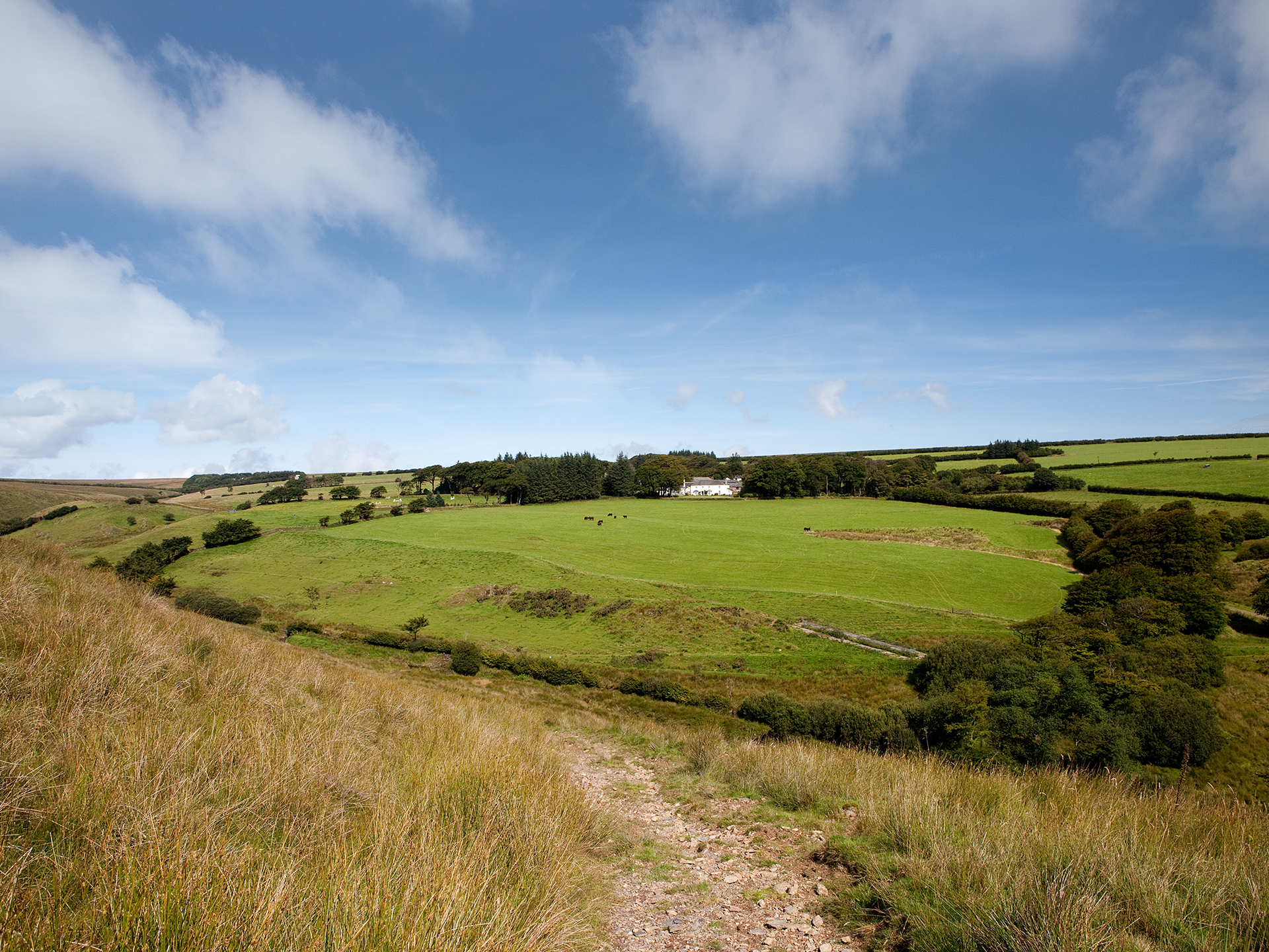 Large holiday homes surrounded by unspoilt Exmoor countryside