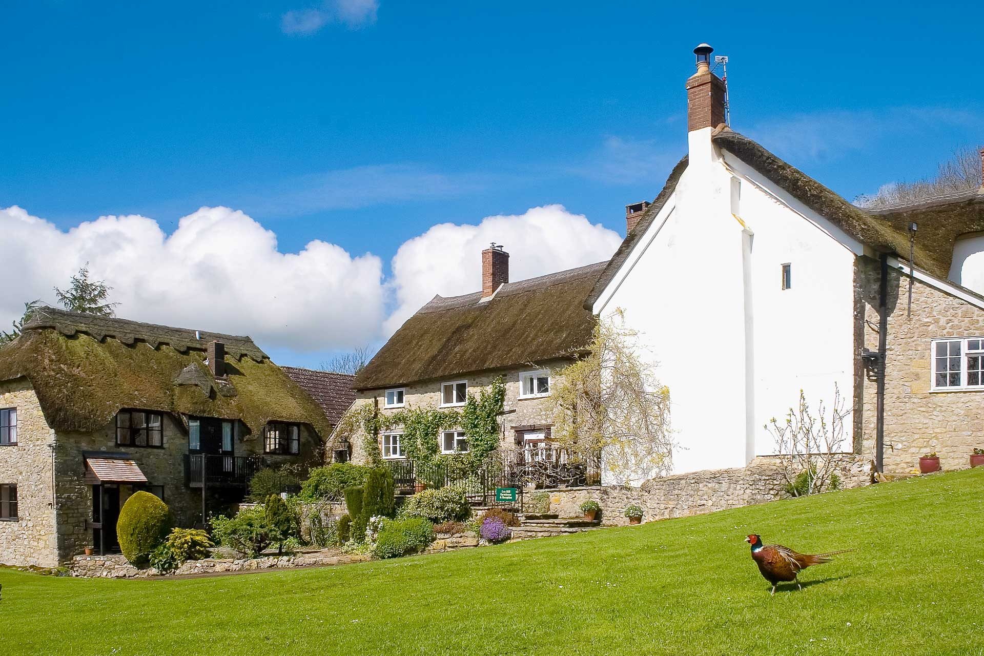 Lea Hill Cottages, group of 4 cottages within the Blackdown Hills near Membury in East Devon