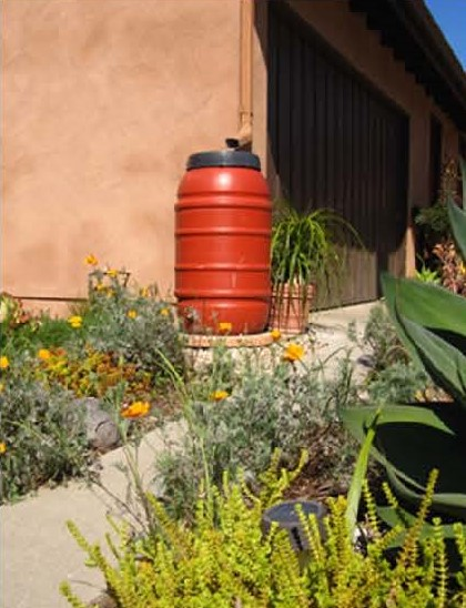 Image of a rain barrel