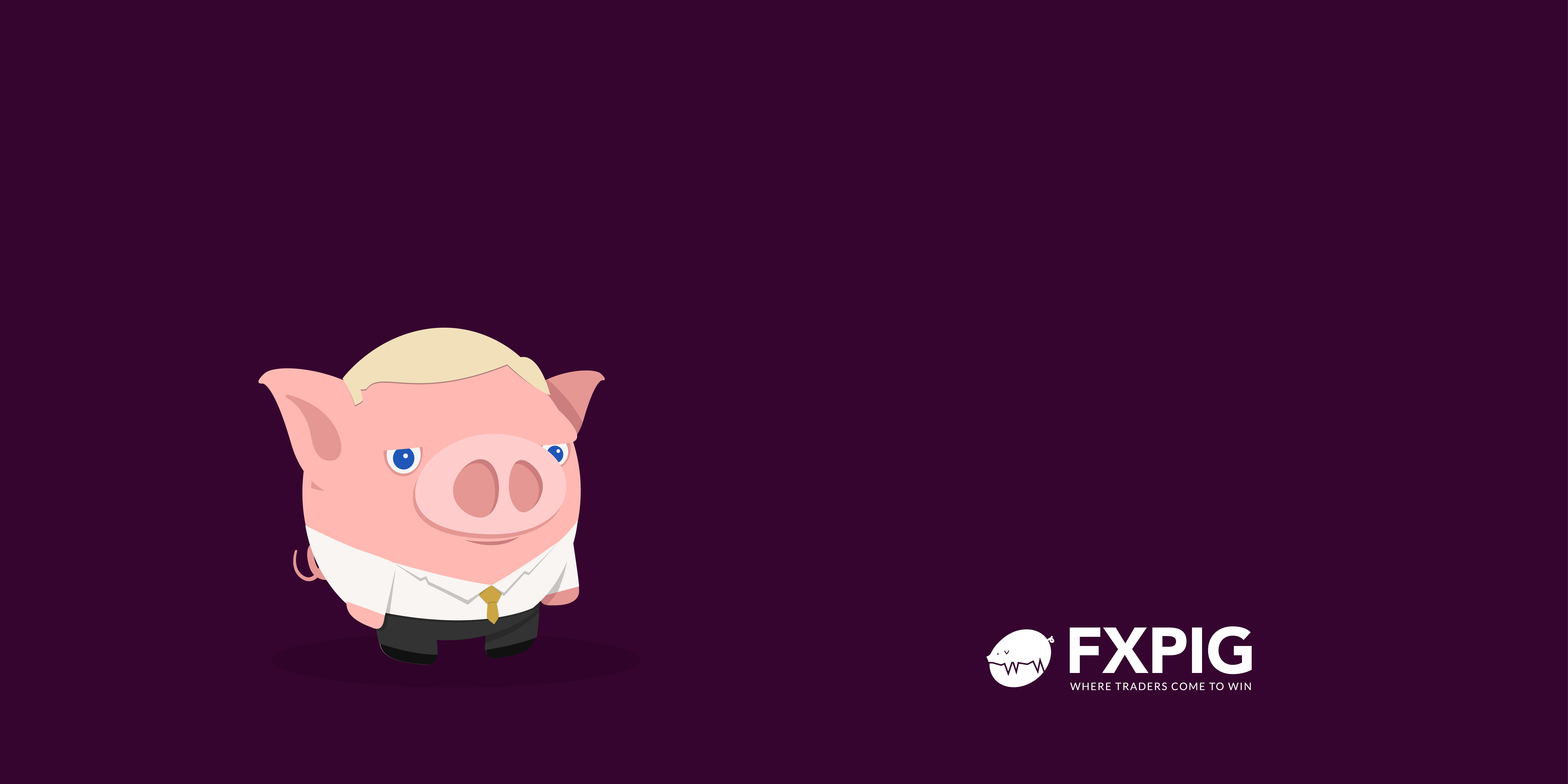 FOREX_Probable-risk-reduction_trading-quote_Seykota_FXPIG