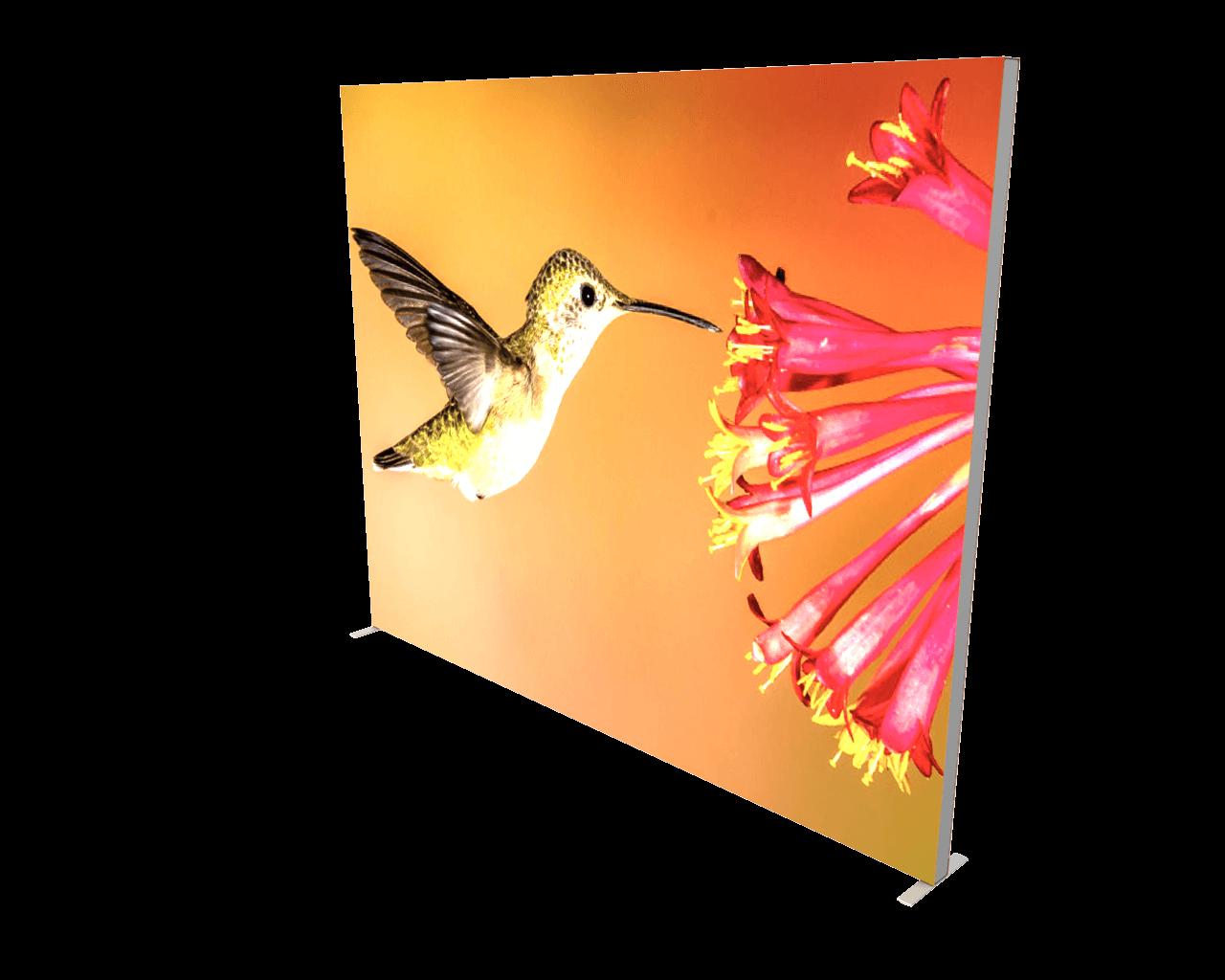 Infinity DNA Pro 10ft Lightbox Panel